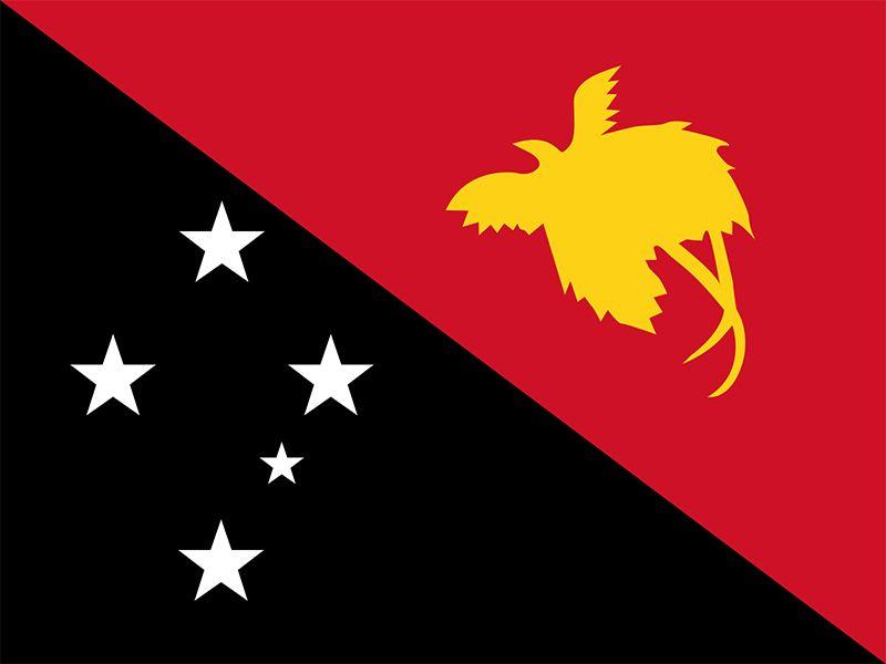파푸아 뉴기니의 국기